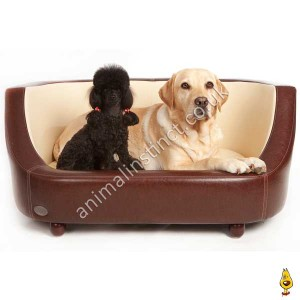 C&W Oxford dog bed brown large