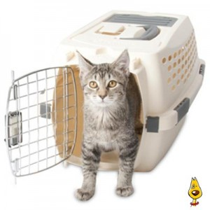 Airline Cat Carriers