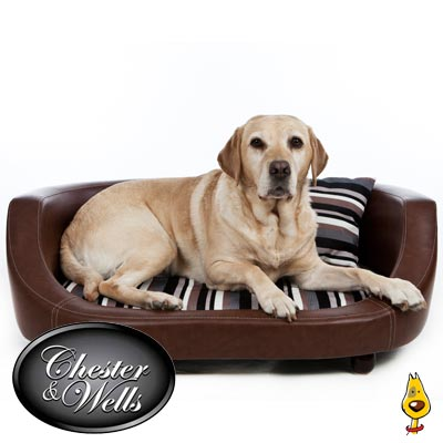 Luxury Dog Sofa Beds