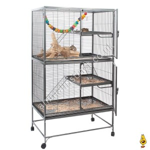 Xtrail cage with degus