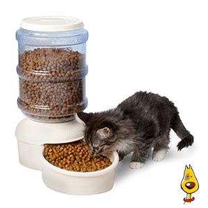 Automatic Feeder For Cats Uk