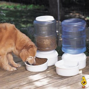 dog waterers & feeders